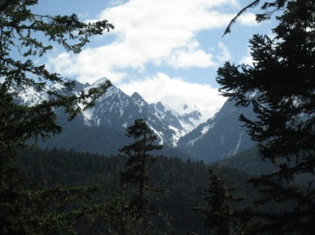 Picture from about a days hike in from the Elwha trailhead
