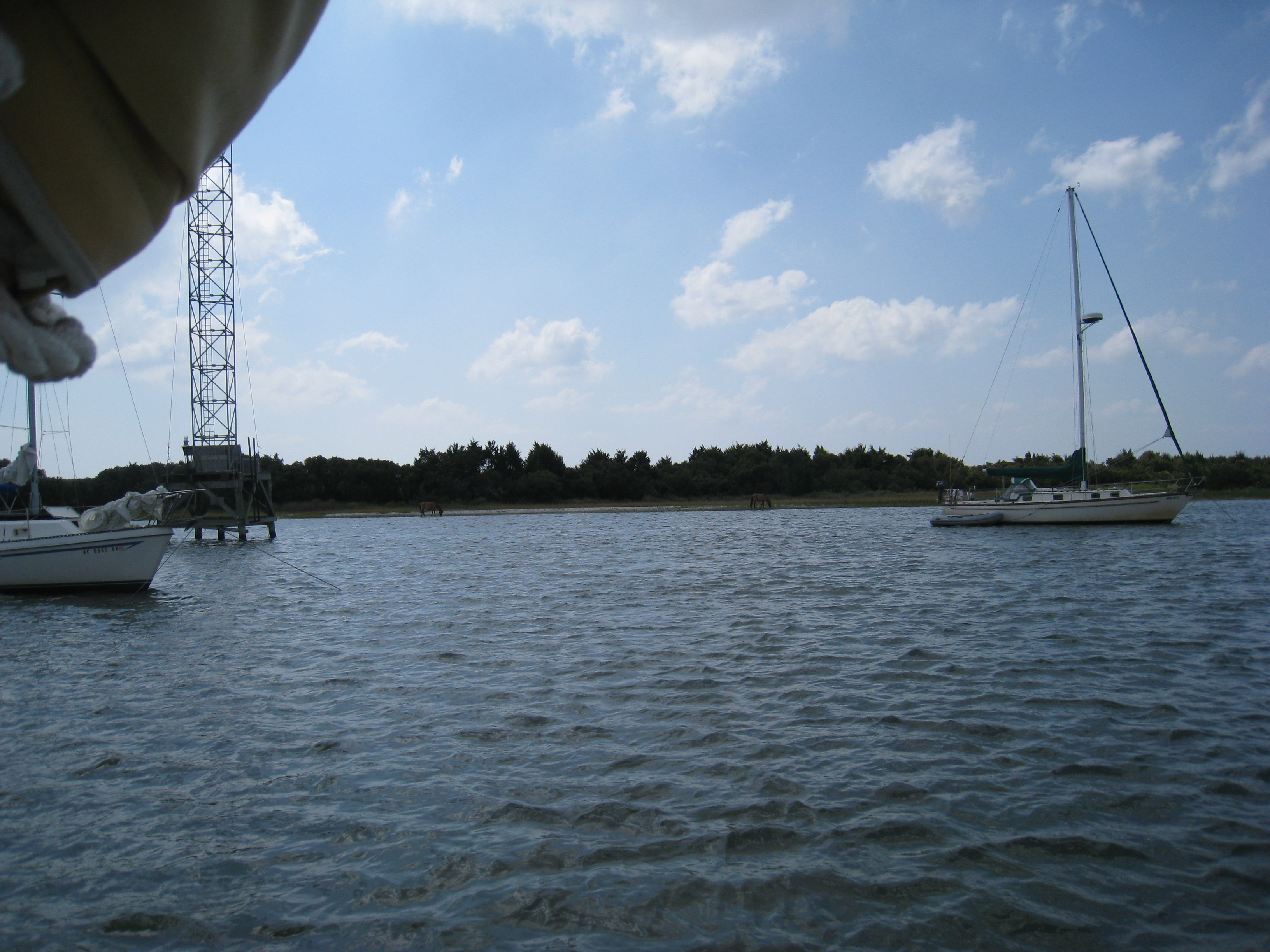 Sailing down the intracoastal waterway for 5 days adventure from wild horses on an island across from beaufort nc publicscrutiny Images